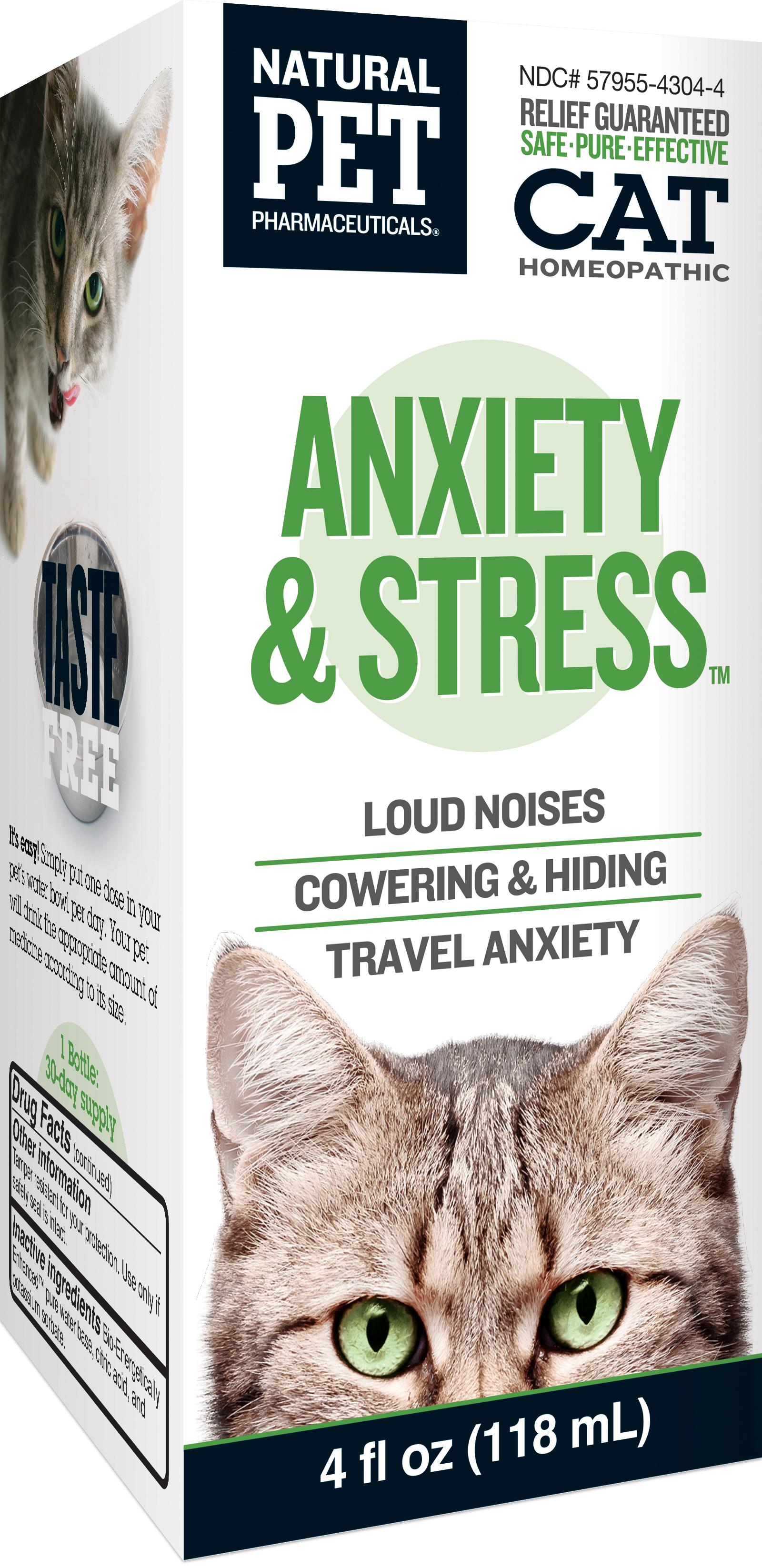 Cat: Anxiety & Stress
