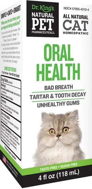 Cat Oral Health