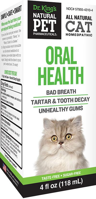 Cat Oral Health