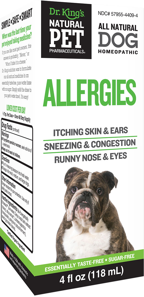 Dog Allergies