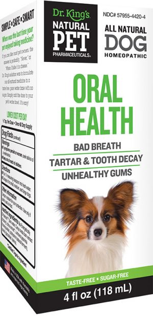 Dog Oral Health